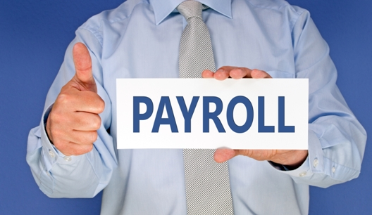 Accountant Holding Payroll